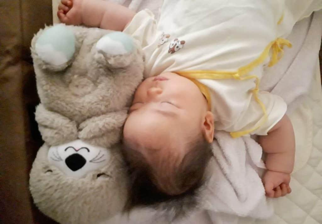トイサブ 生後4ヶ月 おやすみラッコ